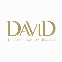 DAVID (Italy)